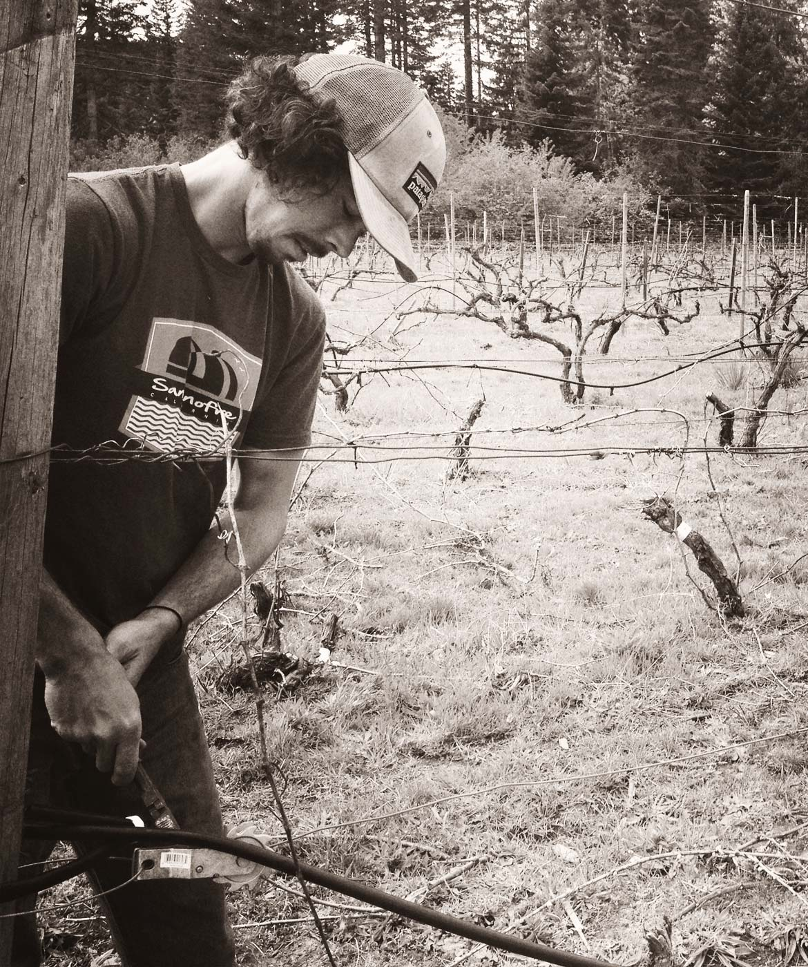wwc-winemaker-brendan-vineyard
